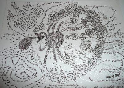 2003- crabe essai